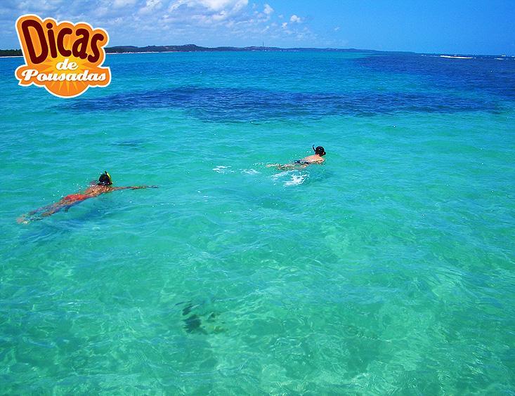 Dicas de passeios al maragogi mergulho nas piscinas for Piscinas naturales maragogi